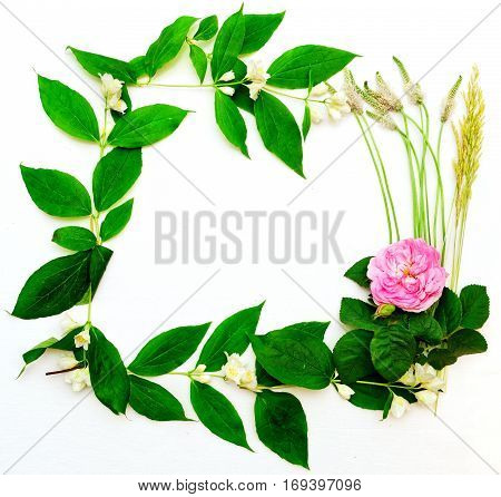 Wreath With Pink Tea Rose And Jasmine Flowers And Leaves