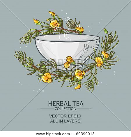 rooibos tea vector illustration on color background