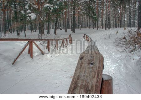Wooden Bridge In Winter Forest