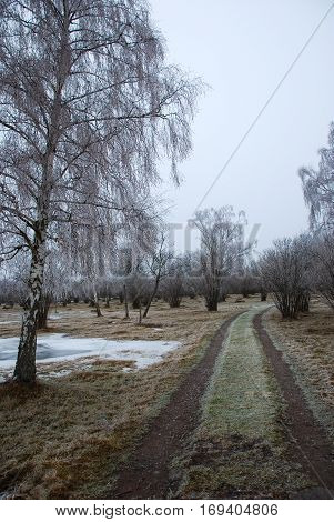 Country road into a frosty landscape at the Swedish countryside