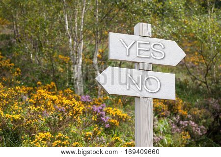 Signpost in summer mountains, choice of direction in life, guidepost in mountains, signpost in mountains, yes, no,
