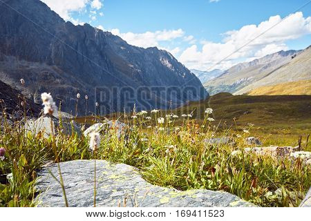 Journey On Foot Through The Mountain Valleys. Beauty Of Wildlife. Altai, The Road To Shavlinsky Lake