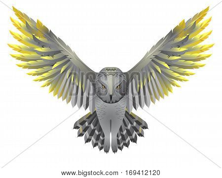 Flying owl illustration. Bird with golden wings isolated on white
