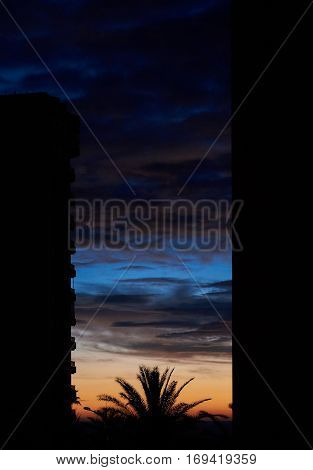 Silhouette of a highrise buildings and palm tree at sunrise. Spain