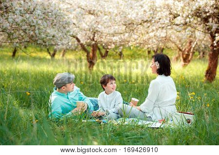 Young family picnicking in blooming apple garden on beautiful spring day