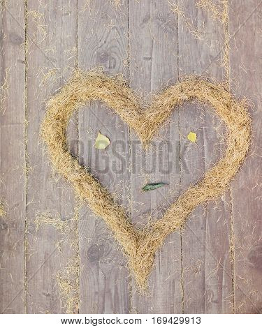 Heart Made Of Yellow Spruce Needles