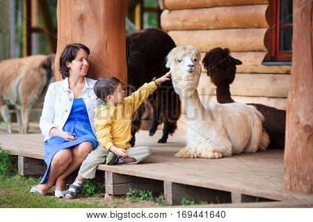 Cute little boy and his mother playing with a baby alpaca on farm