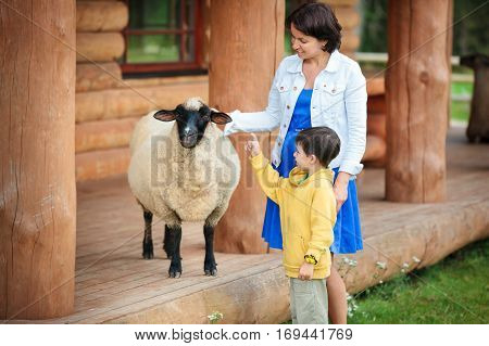 Young woman and her little son looking at a sheep on farm