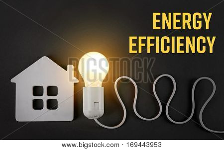 Light bulb with house figure and text ENERGY EFFICIENCY on dark background