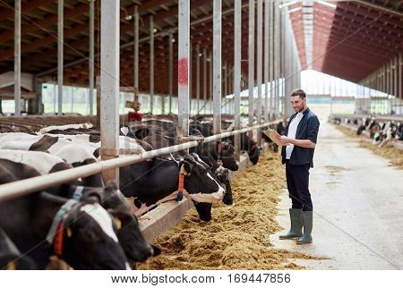 agriculture industry, farming, people and animal husbandry concept - young man or farmer with clipboard and cows eating hay in cowshed on dairy farm