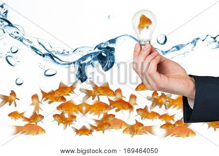 Side view of fish swimming against clear light bulb