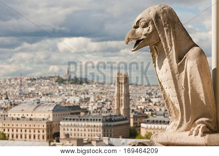 Gargoyle on Notre Dame Cathedral and city of Paris close up, France
