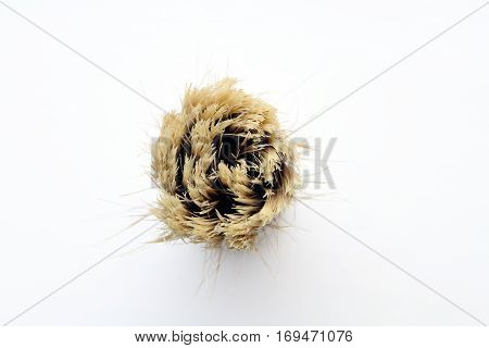 Shaving brush from above on white background