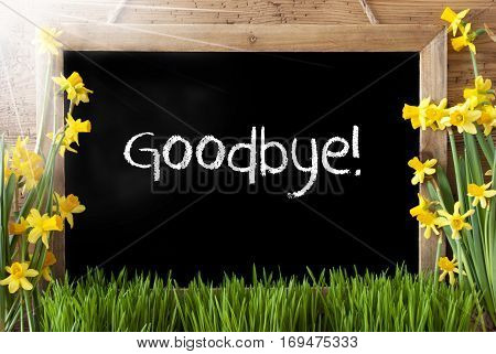 Blackboard With English Text Goodbye. Sunny Spring Flowers Nacissus Or Daffodil With Grass. Rustic Aged Wooden Background.