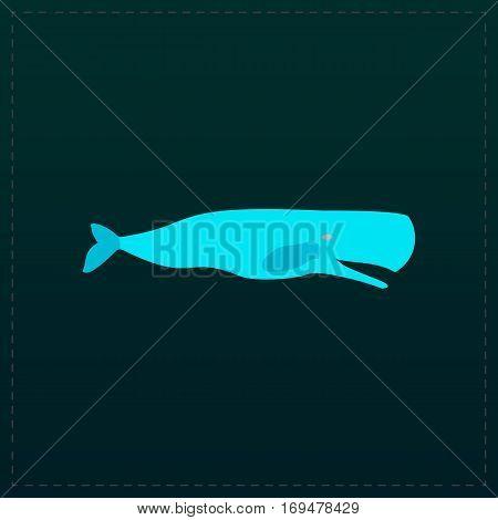 Sperm Whale. Color symbol icon on black background. Vector illustration