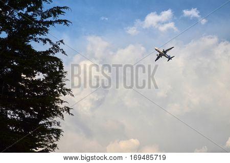Airplane Crossing The Sky Above The Simon Bolivar Park