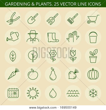 Gardening tools. Vector thin line icon set. Gardening icons tree wheelbarrow flower trowel sapling sun watering can. Gardening isolated leaf vegetable pruner pot rake fruit fork boots.