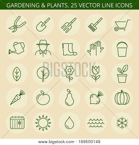 Gardening tools. Vector thin line icon set. Gardening icons tree wheelbarrow flower trowel sapling sun watering can. Gardening isolated leaf vegetable pruner pot rake fruit fork boots.
