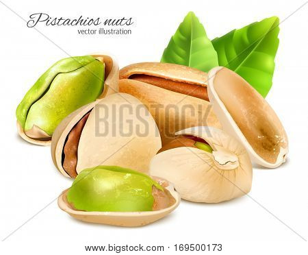 Pistachio nuts with leaves. Vector illustration of whole and cracked pistachios and pistachio kernels. Fully editable handmade mesh.