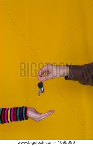 Key Owner