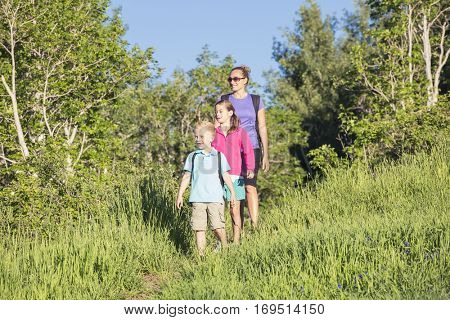 A front view of a young family hiking together in a beautiful mountain meadow trail. Lots of copy space. Full length photo
