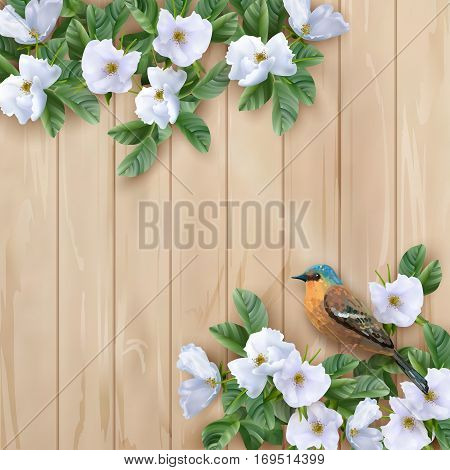 Vector white flowers and the bird on wooden planked background. Perfect for wedding, greeting or invitation design