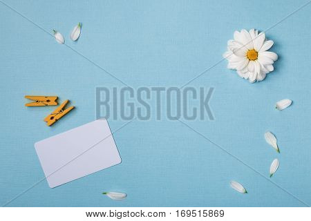 Spring top view composition: business / credit / visiting card mockup scattered petals around white flower with yellow heart clothespins. Sky blue background with copy space for text. Flat lay.