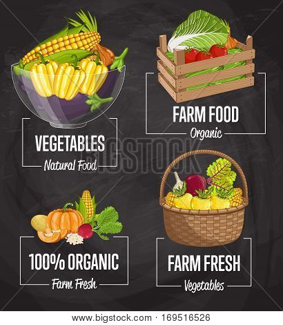Organic farm food set vector illustration. Natural vegetable, organic farming, vegan food store, retail farm product label. Healthy farm advertising with tomato, onion, pumpkin, radishes, potatoes