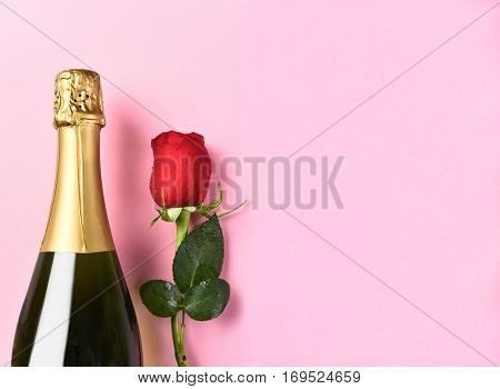 Closeup of a bottle of champagne and a single red rose against a pink background with copy space.