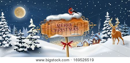 Vector background with winter landscape. Greeting card with snowy Christmas night.