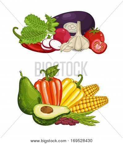 Fresh organic vegetable composition isolated vector illustration. Locally grown food, vegetarian nutrition, organic healthy diet. Natural vegetable set with pepper, corn, eggplant, tomato, garlic