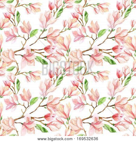Watercolor magnolia flower seamless pattern. Spring blooming branch on white background. Hand painted floral illustration in delicate pastel colors