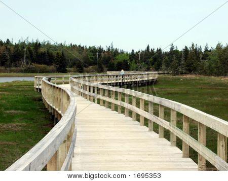 Girl Walking On Boardwalk