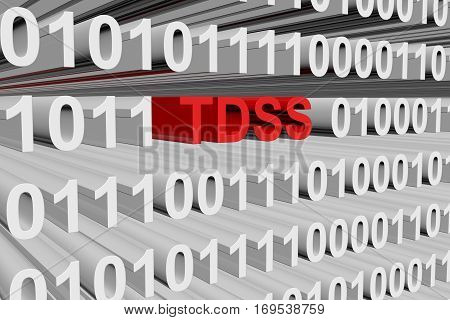 tdss in the form of binary code, 3D illustration