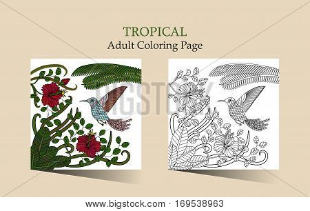 Vector ilustration with flowers of tropical hibiscus and fantasy hummingbird. Adult antistress coloring page with tropical plants and flowers.