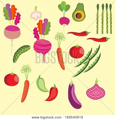 Set of vegetables. Avocado tomato cucumber eggplant garlic onions peppers carrots beets radishes and asparagus isolated on white.