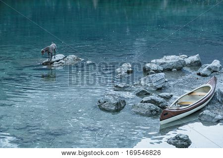 Canoe and dog on a rocky shore of a calm blue Aibsee lake