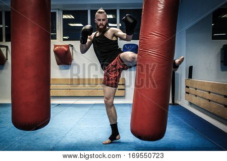 Fighter training with punching bag at gym
