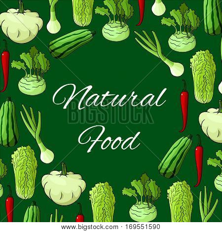 Veggies poster of chinese cabbage napa, squash zucchini and patisony, kohlrabi and green onion leek, spicy chili pepper or jalapeno. Vector natural fresh vegetables and farm fresh organic ripe harvest