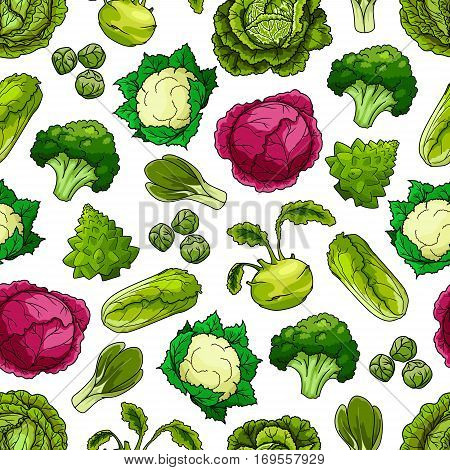 Seamless pattern of cabbage vegetables white and red cabbage, romanesco broccoli, kohlrabi and brussels sprouts, cauliflower, chinese cabbage napa or bok choy and pak choi, scotch kale. Vector vegetarian or vegan leafy veggies