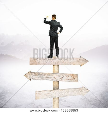 Businessman standing on abstract wooden road sign. Landscape background. Different direction concept