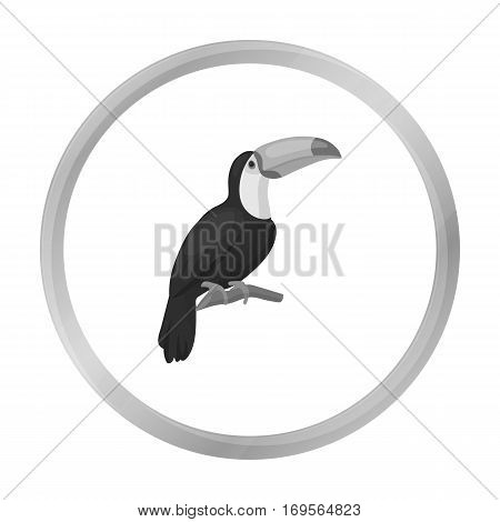 Toucan icon in monochrome style isolated on white background. Bird symbol vector illustration.