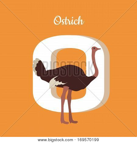 Animal alphabet. Letter - O. Brown ostrich stands near letter. Alphabet learning chart with animal illustration for letter and animal name. Vector zoo alphabet with cartoon animal on orange background