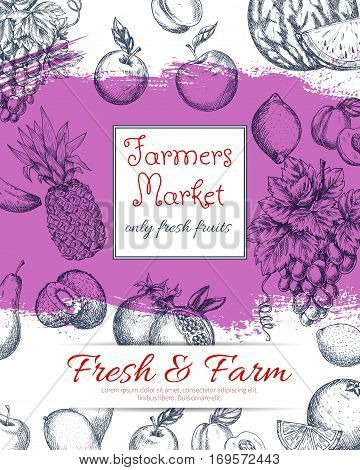 Fresh farm fruits poster of vector sketched apple and juicy pomegranate, apricot or pear and tropical pineapple, orange and exotic kiwi with citrus lemon, white or green grape. Natural healthy organic farmer market fruits design