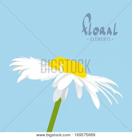 Bright vector flower on blue background