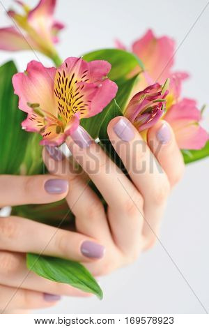 Hands Of A Woman With Dark Red Manicure On Nails And Flowers Alstroemeria On A White Background
