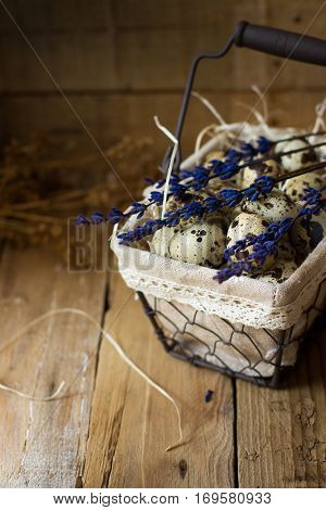 Quail eggs in a lined wire basket, on straw, with lavender twigs on barn wood background, Easter, rustic vintage style, kinfolk, simplicity, countryside interior