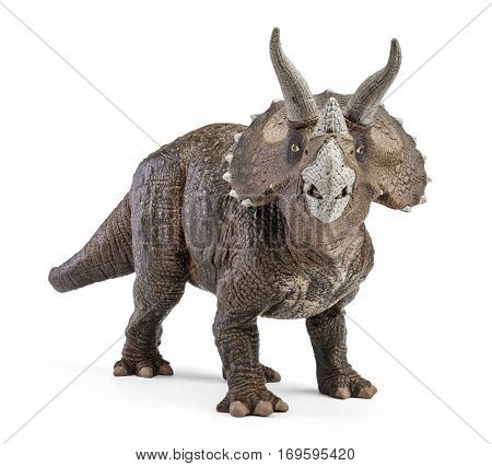 Triceratops, front view dinosaurs toy isolated on white background with clipping path. Genus of herbivorous ceratopsid dinosaur.