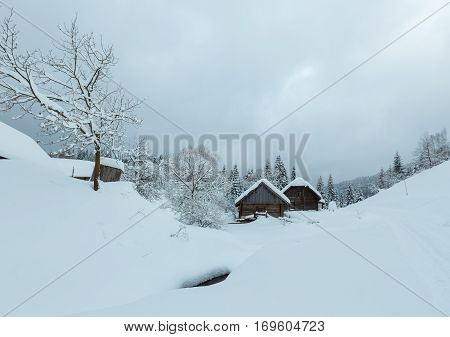 Winter Carpathian Village.