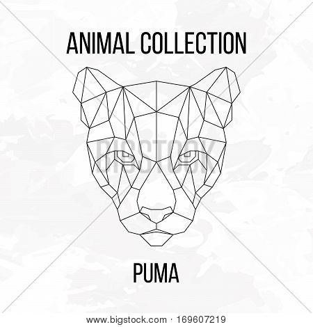 Geometric animal puma head line silhouette isolated on white background vintage design element